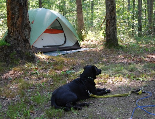 Green-Ridge-Camping15