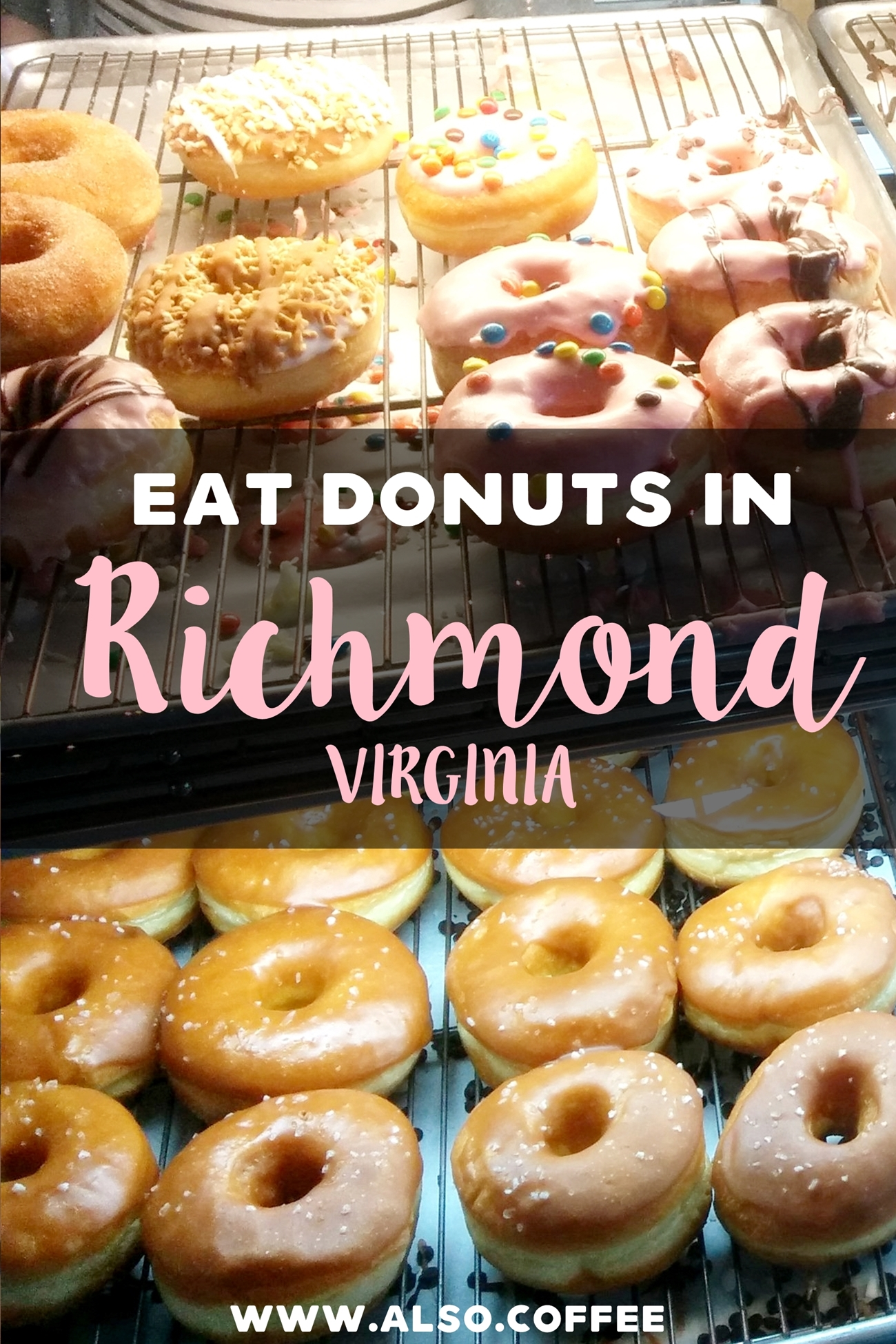 Sugar Shack Donuts in Richmond, VA