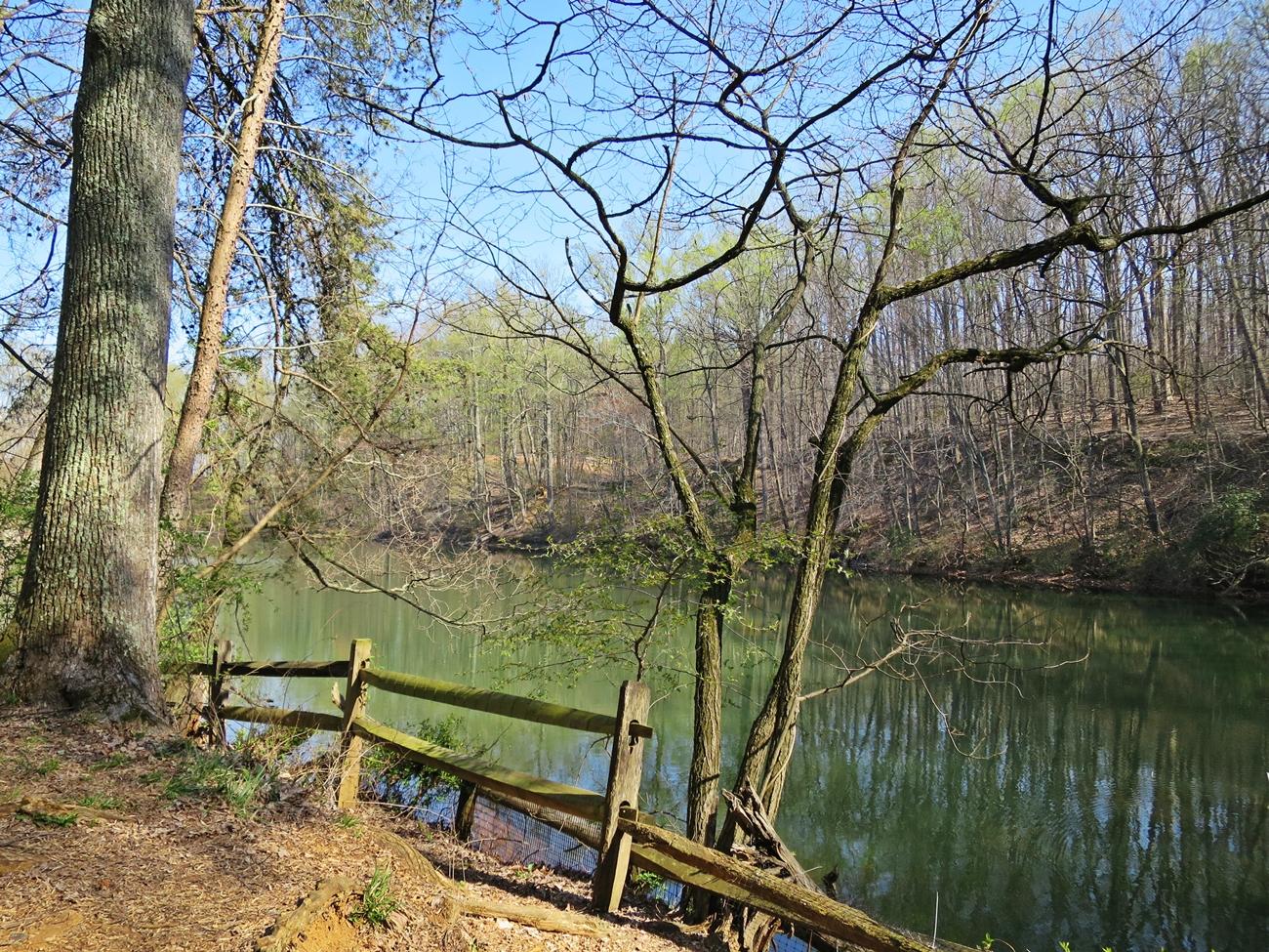 Hiking at Oregon Ridge Park Oregon-Ridge-Hike-02