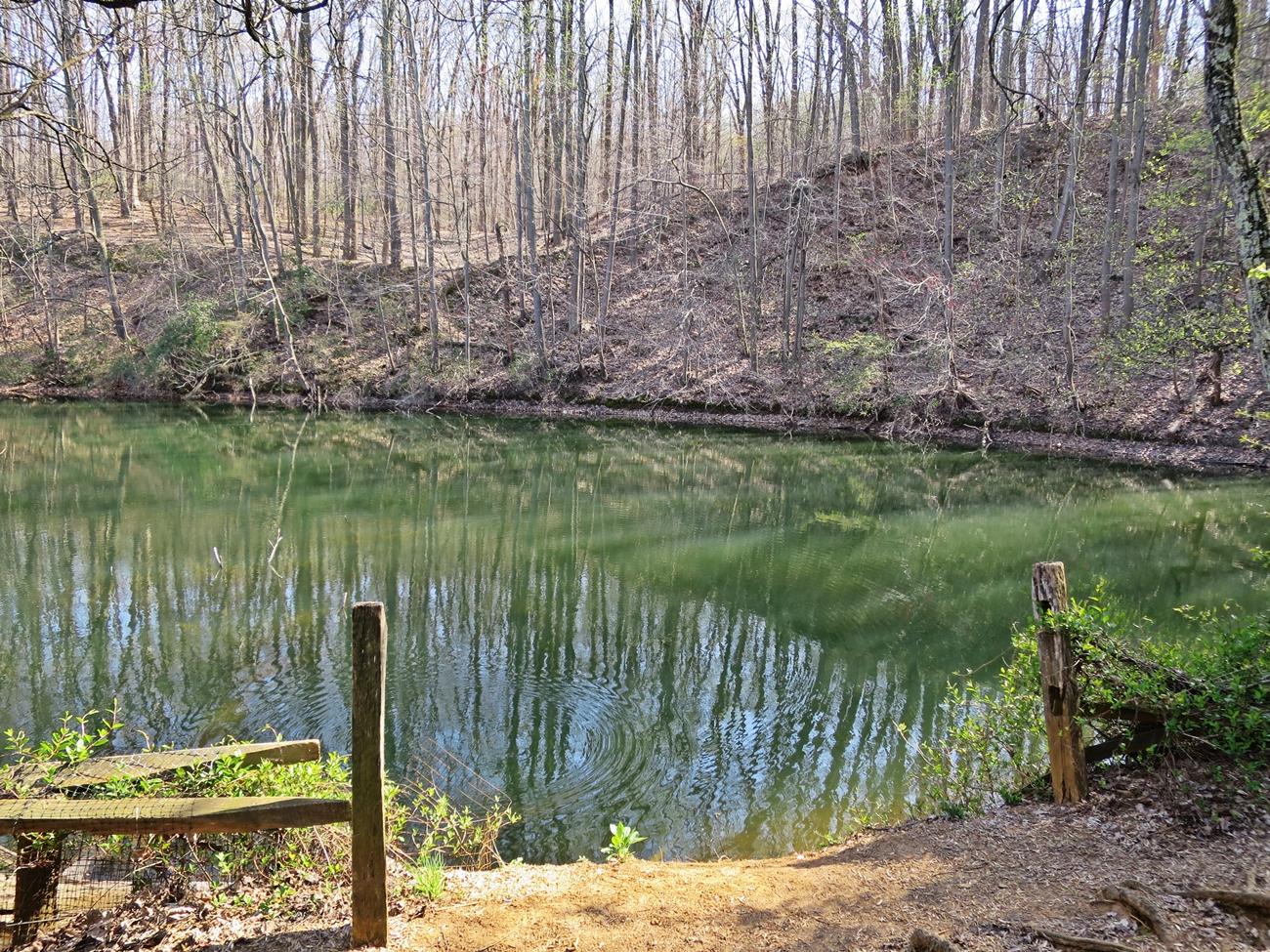 Hiking at Oregon Ridge Park Oregon-Ridge-Hike-03
