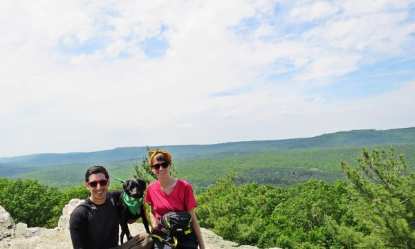 Michaux-State-Forest-040